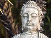 热带花园中的友好佛画像 — 图库照片