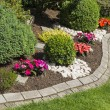 Blooming flower stone garden in summer — Stockfoto