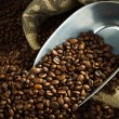 Coffee beans with metal scoop — Stock Photo #13145885