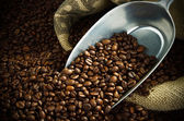 Coffee beans with a metal scoop — Stock Photo