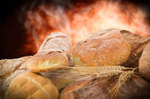 Bread out of oven — Stock Photo