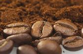 Coffee powder — Stock Photo