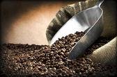 Stål scoop och kaffebönor — Stockfoto