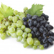 Stock Photo: Freshness grape
