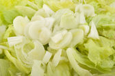 Onion and iceberg salad — Stock Photo