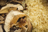 Rice and dried porcini mushrooms — Stock Photo