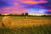 Coucher de soleil à la campagne — Photo