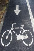 Bike lane 6 — Stock Photo