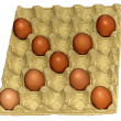 Eggs in cardboard cofrag — Stock Photo