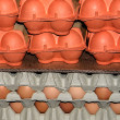 Eggs stored 7 — Stock Photo #12734000