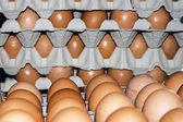 Jaja przechowywane 9 — Zdjęcie stockowe