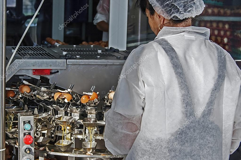 Woman who oversees the installation of breaking eggs and separating whites from yolks automatically in order of their pasteurization — Stock Photo #12883670