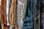 Fur Clothes 2 — Stock Photo