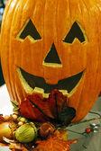 Arrangement for Halloween 1 — Stock Photo