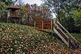 Autumn 3 — Stock Photo