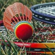 Постер, плакат: Badminton racket and shuttlecoc 5