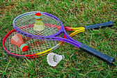 Badminton racket and shuttlecoc - 6 — Stock Photo
