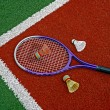 Stock Photo: Badminton shuttlecocks & Racket-9