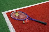 Badminton shuttlecocks & Racket-7 — Photo