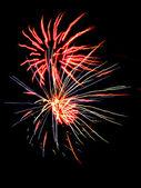 Fireworks 19 — Stock Photo