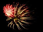 Fireworks 24 — Stock Photo