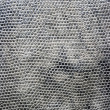 Texture of snake skin-2 — Stock Photo