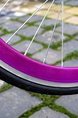 Roda de bicicleta. detalhe 2 — Fotografia Stock