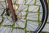 Bicycle wheel. Detail 14 — Stock Photo