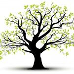 Vecor tree, green foliage — Stock Vector #14841965
