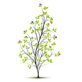 Young tree with flowers and shadow over white, vector — Stock Vector