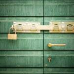 Golden padlock and handle on green door, detail — Stock Photo #13173630