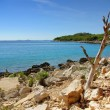 Stock Photo: Dry rocky land on the coast of the turquoise sea, Croatia Dalmatia