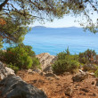 Rocky coast of the turquoise sea, Croatia Dalmatia — Stock Photo #13619393