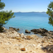 Rocky coast of the turquoise sea, Croatia Dalmatia — Stock Photo #13619395