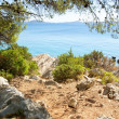 Rocky coast of the turquoise sea, Croatia Dalmatia — Stock Photo