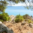 Rocky coast of the turquoise sea, Croatia Dalmatia — Stock Photo #13619400