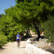 Stock Photo: Senior cyclist riding gravel road by sea, Croatia