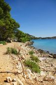 Sandy road along the beach and the sea, Croatia Dalmatia — Stock Photo