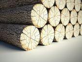 Felled tree stumps, 3d background — Stock Photo