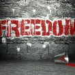 Stock Photo: Graffiti wall with freedom, street background