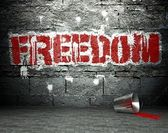 Graffiti wall with freedom, street background — Stock Photo