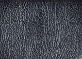 Black leather texture, closeup pattern — Stock Photo