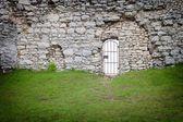 ворота в старый каменный замок стен, архитектурная деталь — Стоковое фото