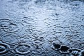 Rain drops in the water close up, background — Stock Photo
