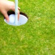 Photo: Player hand removing golf ball from cup after shot