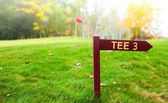 Autumn golf course with green, tee sign — Zdjęcie stockowe