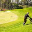 Stock Photo: MMowing Lawn on golf course using Lawn-Mower