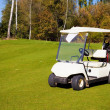 Стоковое фото: Golf-cart car on golf course