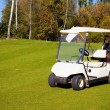 Stockfoto: Golf-cart car on golf course