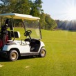 Golf-cart car on golf course — Foto de Stock